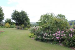 large-garden-for-guests-2.jpg